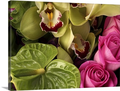 Pink roses, green anthuriums, cymbidium orchids