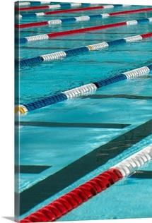Plastic separators in a swimming pool creating lanes.