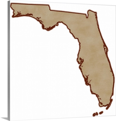 Relief Map Of Florida Wall Art Canvas Prints Framed Prints Wall