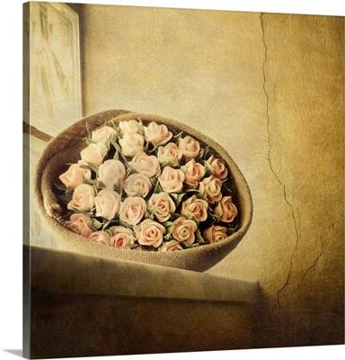 Roses on window.