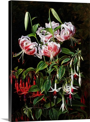 Rubrum Lilies And Fucshias By Johan Laurentz Jensen