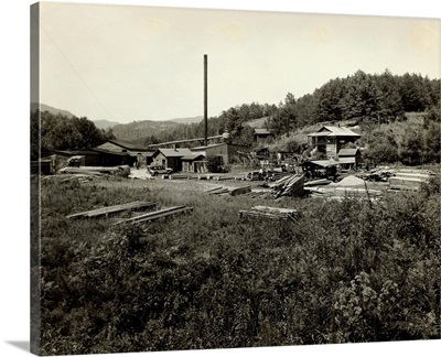 Saw Mill In North Carolina