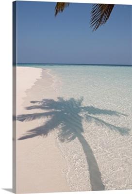 Shadow of a palm tree on a deserted island beach