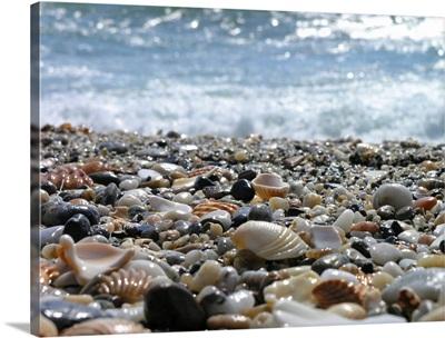 Shells on a shore not far away from Gibraltar