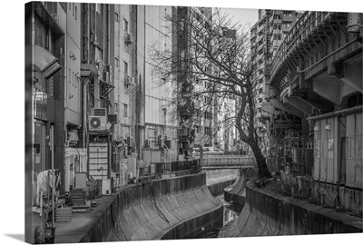 Shibuya river, Tokyo, Japan.