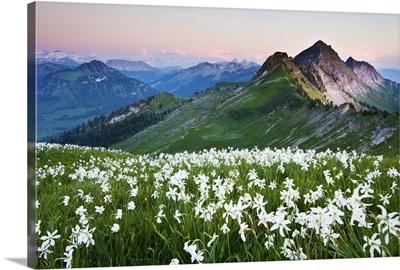 Sight of Vanil Artses, Fribourg, Switzerland.