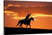 Silhouette of cowboy on horseback near Fairplay, Colorado