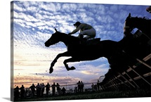 Silhouette of Horses Jumping a Steeplchase