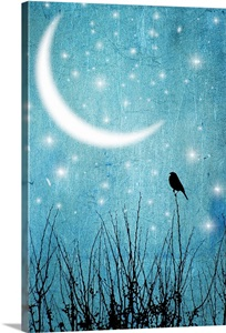 Silhouette Of One Bird And Branches Against A Blue Starry Night With A Quarter Moon Wall Art Canvas Prints Framed Prints Wall Peels Great