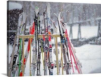 Ski Boards