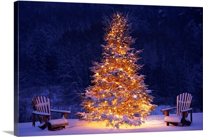 Snow Covering Adirondack Chairs By Lit Christmas Tree