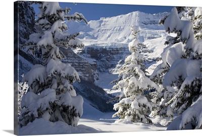 Snowy scene at Lake Louise, Alberta, Canada