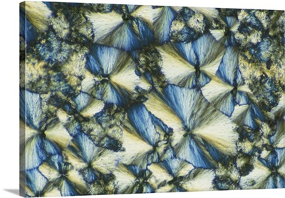 Sodium silicate crystals magnified 200x