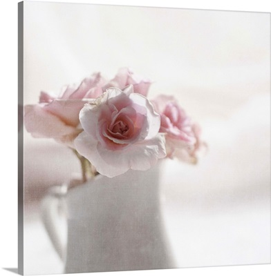 Soft pink roses in white jug.