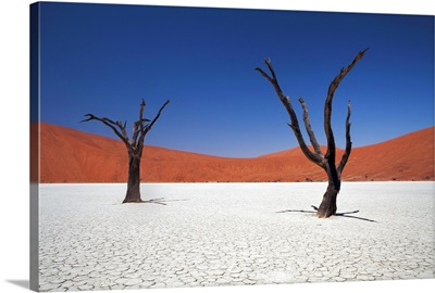 Sossusvlei in Namibia probably one of most photographed places in Namibia.