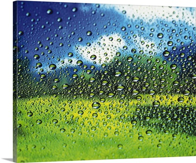 Spread Dew on the Window, Close Up, Differential Focus, In Focus, Out Focus