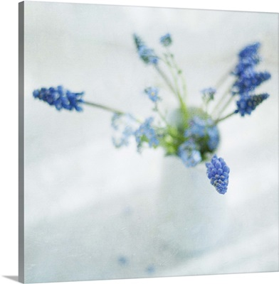 Spring muscari and forget-me-not flowers in white jug.