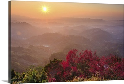 Sun burst, cherry blossoms and mountain layers, Taichung.