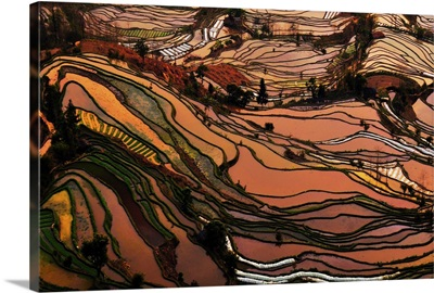 Terrace field in southwest China Yunnan Province.