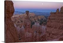 Thor's Hammer in full moonlight, Sunset Point Bryce Canyon National Park, Utah