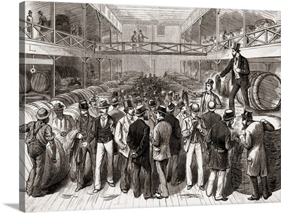 Tobacco Auction In Louisville, Kentucky