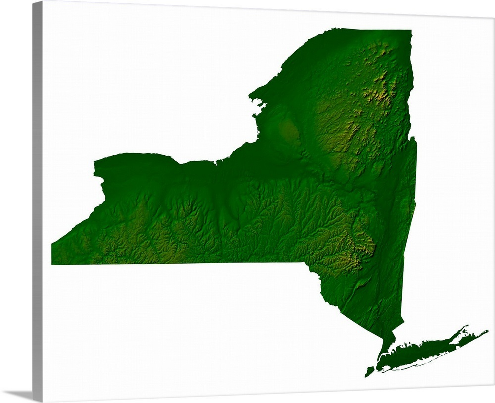 Topographic Map Of New York State Wall Art Canvas Prints Framed
