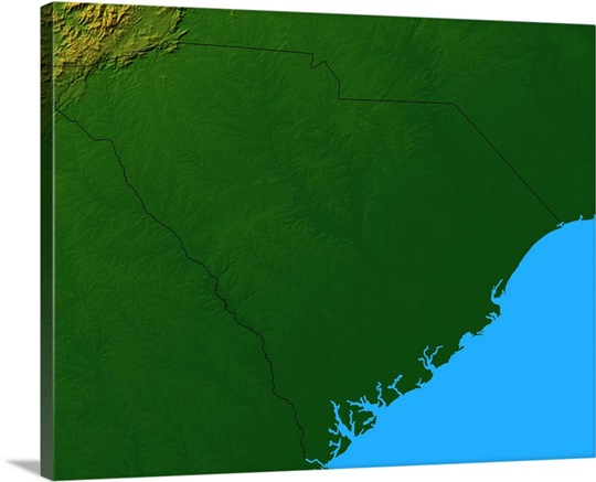 Topographic map of South Carolina Wall Art, Canvas Prints, Framed ...