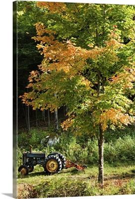 Tractor near tree
