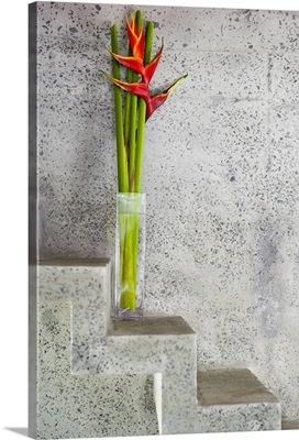 Tropical flowers on stone stairs