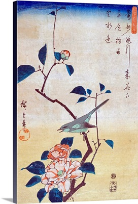 Tsubaki Ni Uguisu (Camellia And Bush Warbler) By Utagawa Hiroshige