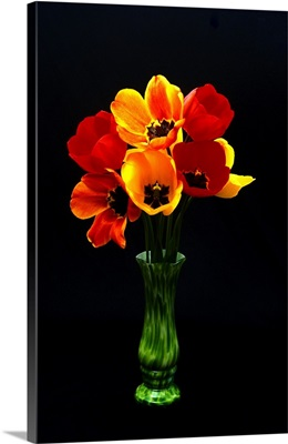 Tulips in a green vase