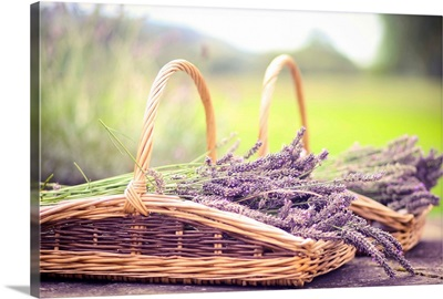 Two baskets full of lavender.