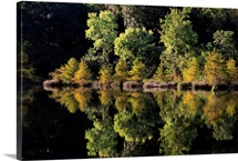 United States, Oklahoma, Beavers Bend State Park,