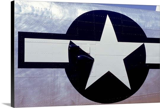 Us Airforce Symbol On Airplane Wall Art Canvas Prints Framed