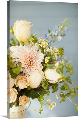 USA, Utah, Provo, bunch of cream colored flowers