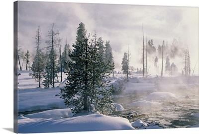 USA, Wyoming, Yellowstone National Park, winter
