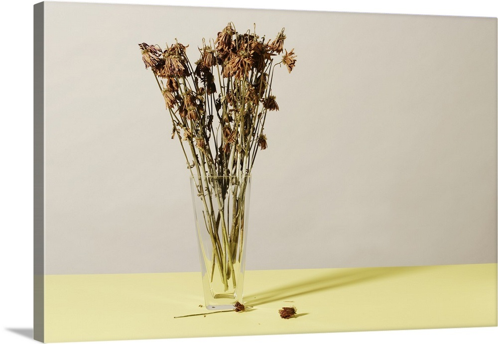 Vase With Dead Flowers Wall Art Canvas Prints Framed Prints Wall