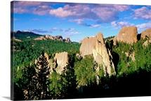View of Custer State Park, Black Hills, South Dakota, USA