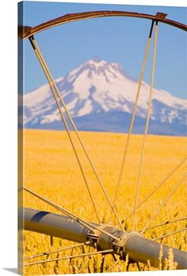 View of Mount Hood through farming equipment, Oregon, USA