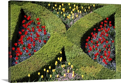 Villandry garden, France