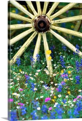 Wagon Wheel Sitting Among Wildflowers