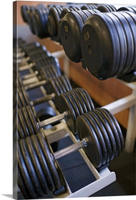 Weights on rack in gym