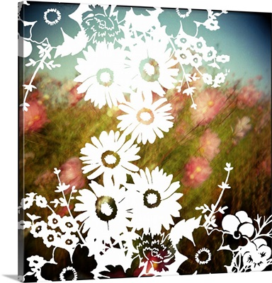 White silhouetted flowers overlay on a Holga shot of a field of pink wild flowers