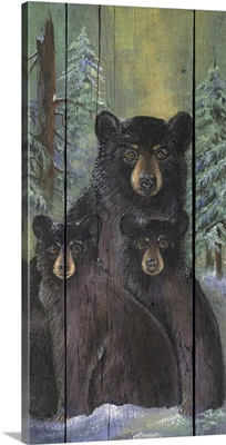Alpine Bear Lodge