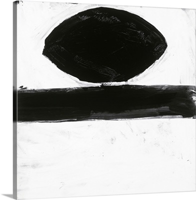 Black and White XV