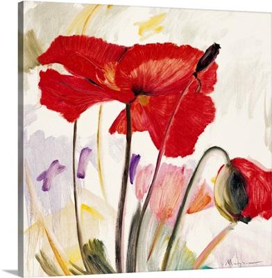 Crimson Poppy II