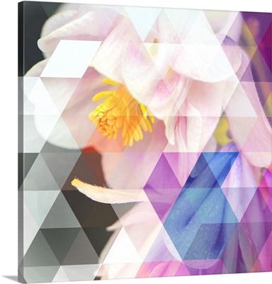 Crystalized Bellflowers