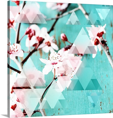 Crystalized Cherry Blossoms