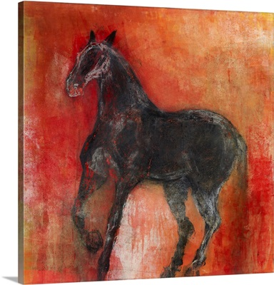 Equine Rouge 1