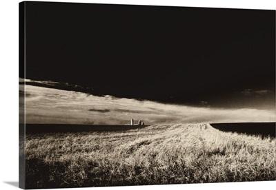 Field and Farm I